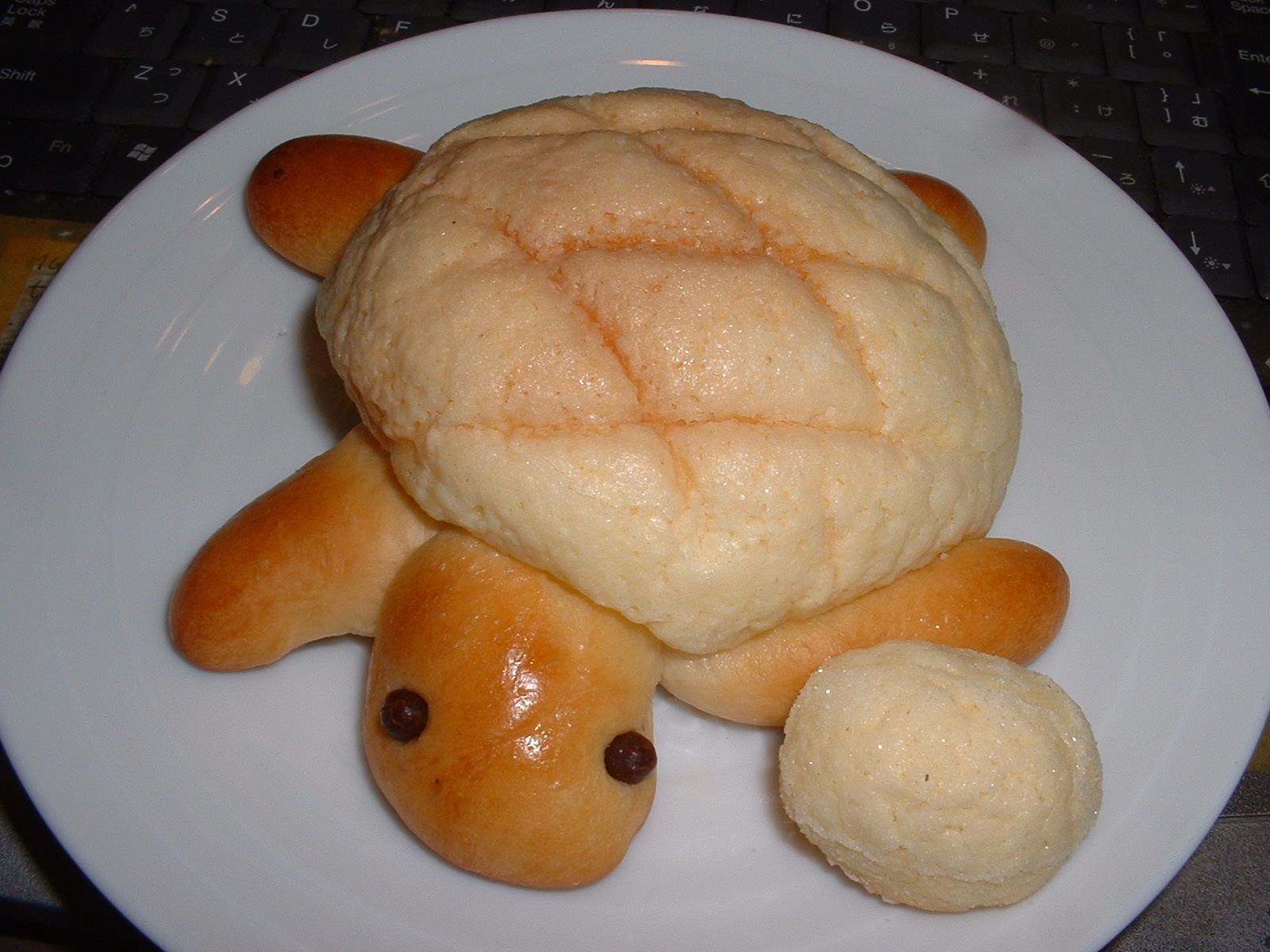 2013.01.27 の「亀パン」Doburoku-TAO.JPG